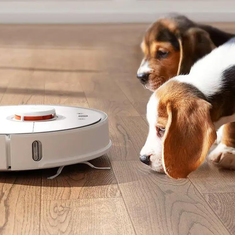 Kies een robotstofzuiger die dierenharen van katten en honden kan opzuigen