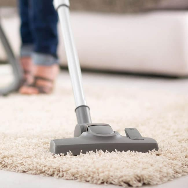 Stofzuigers met zak zijn geschikt voor hoogpolig en laagpolig tapijt